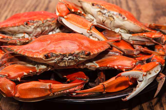 How-to-Buy-Clean-and-Cook-Crabs